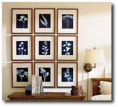 botanical-cyanoprints-pottery-barn
