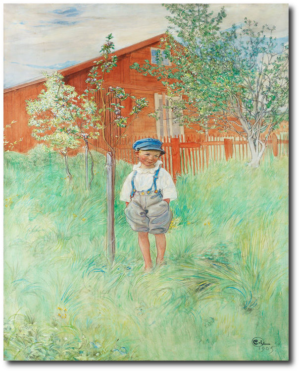 larsson-carl-esbjorn-by-his-own-apple-tree-canvas