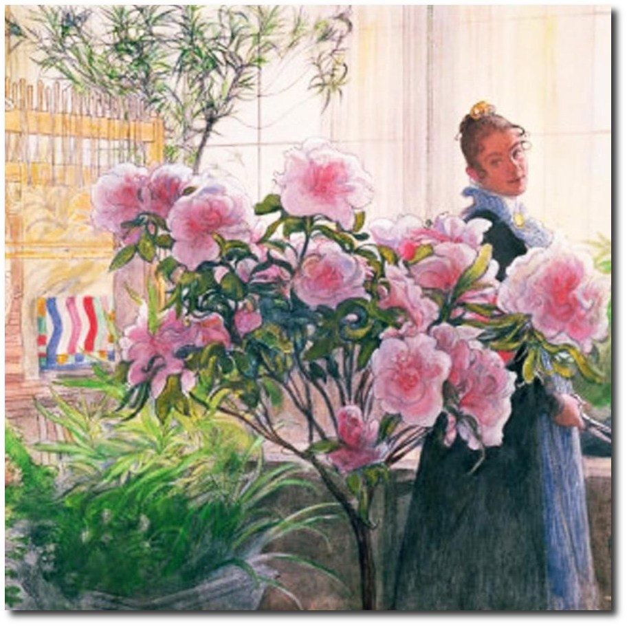 swedish-artist-carl-larssons-inspired-karins-azalea-flowers