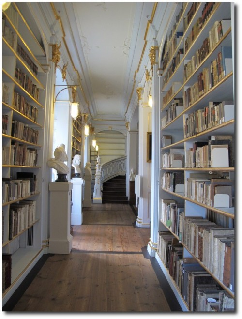 Herzogin anna amalia bibliothek 04 500x659 The Most Beautiful Rococo Library In The World:The Anna Amalia Library