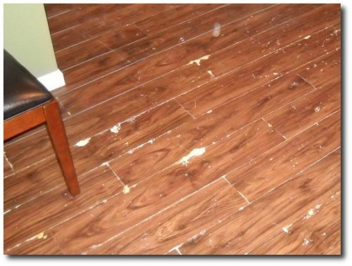 Peel And Stick Laminate Flooring where were we Not For Concrete One Customers Experience Cons For Peel And Stick Plank Flooring