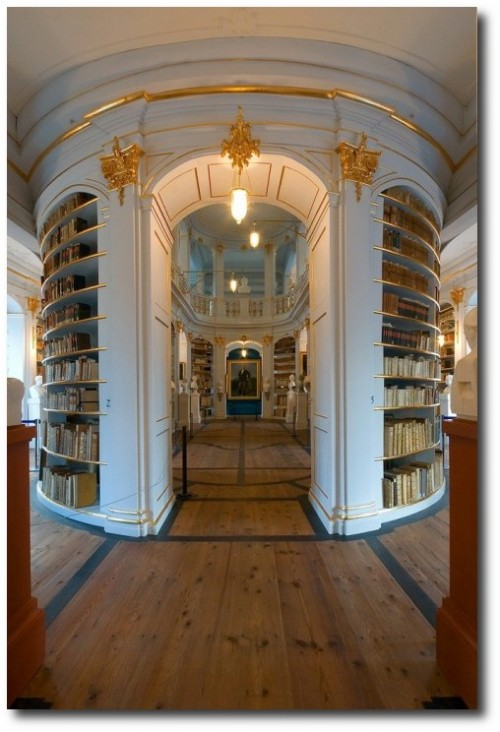 Weimar Herzogin Anna Amalia Bibliothek  3341 RET 1024x768 500x732 The Most Beautiful Rococo Library In The World:The Anna Amalia Library