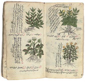 18th century medicinal manuscript