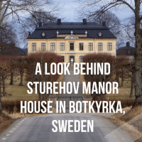 The Swedish Furniture.com(2)